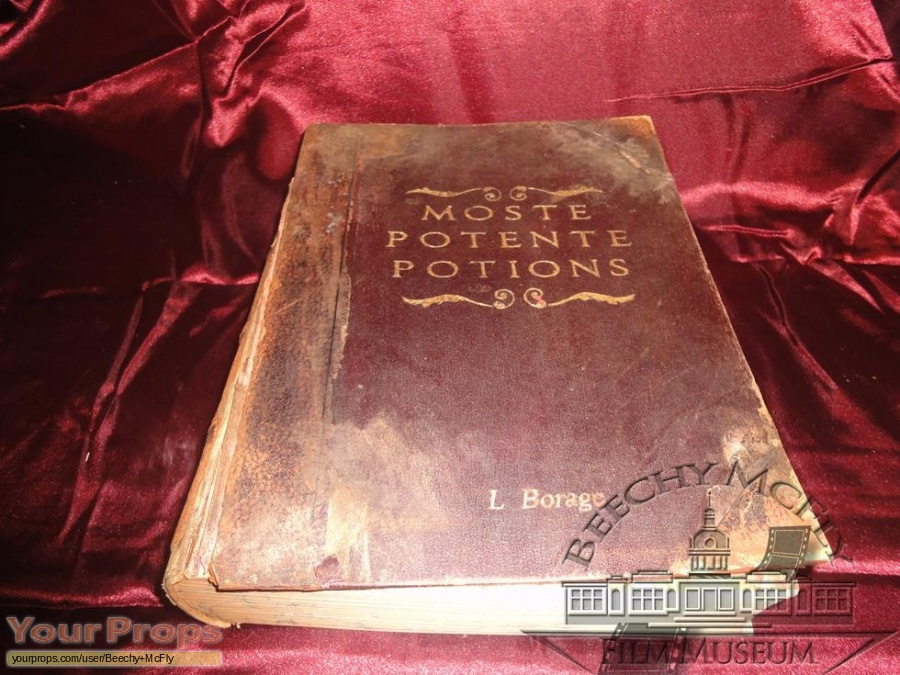 Harry Potter movies replica movie prop