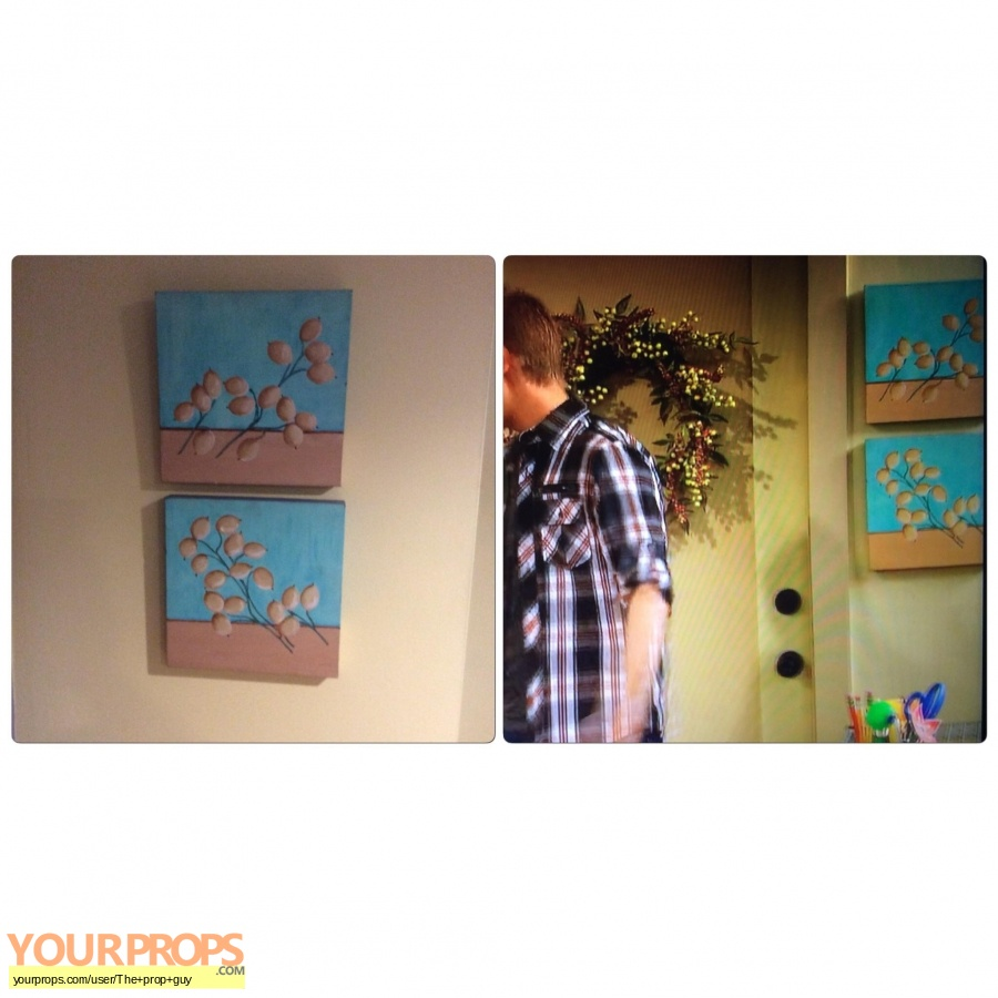 Good Luck Charlie original set dressing   pieces