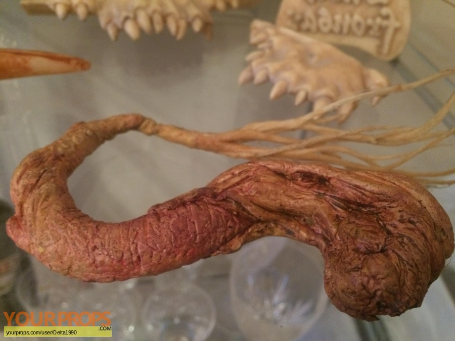 Harry Potter and the Chamber of Secrets original movie prop