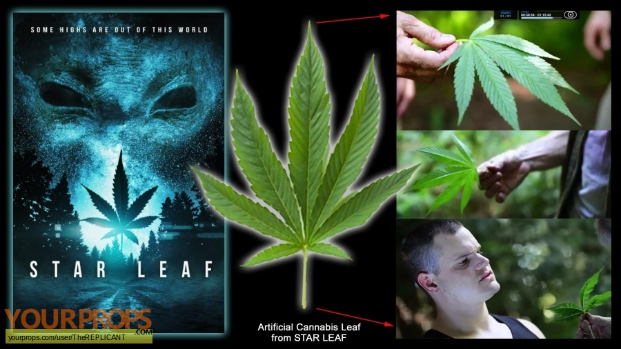 Star Leaf original movie prop
