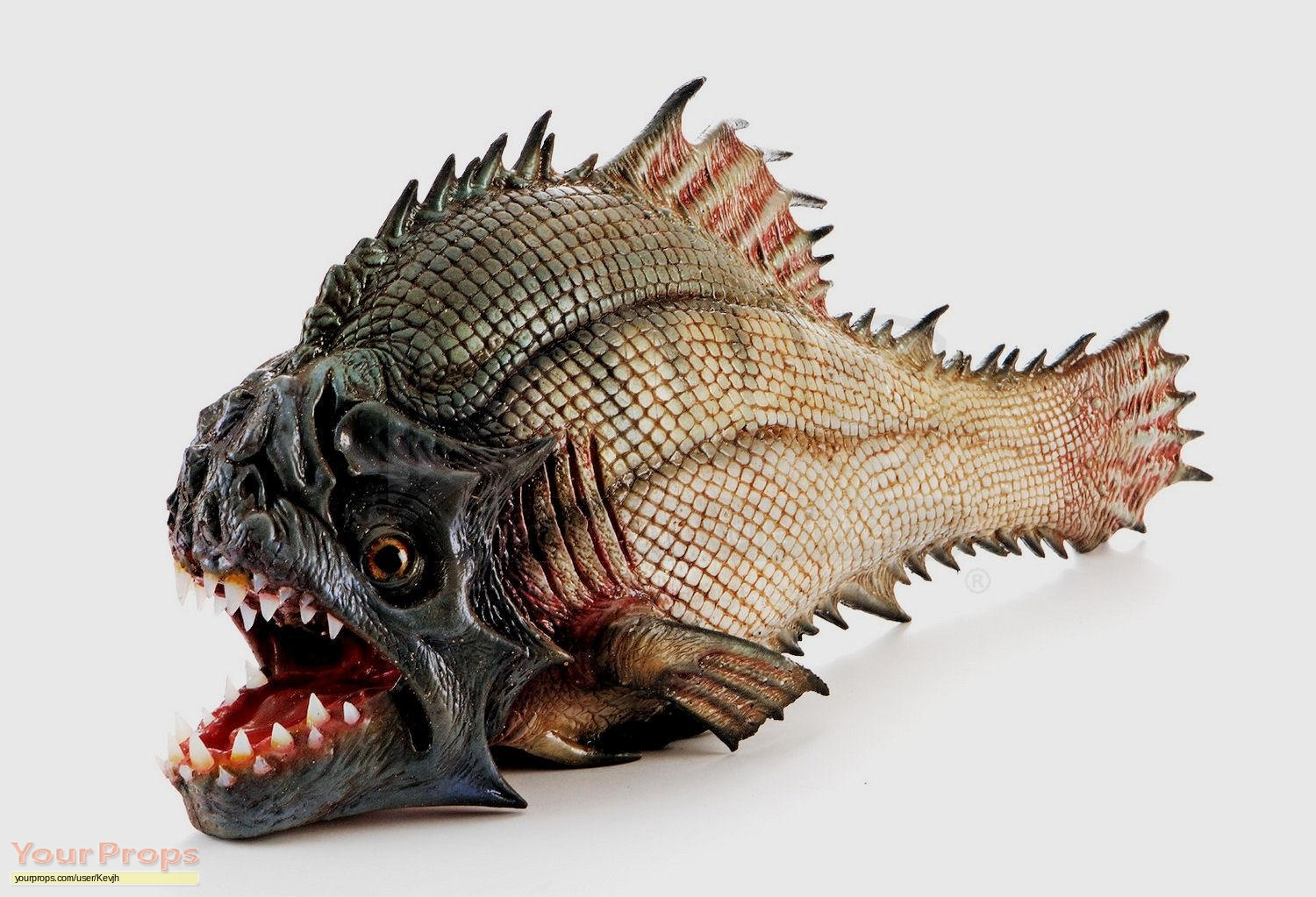 Piranha 3dd hero silicone piranha fish original movie prop for Pictures of piranha fish