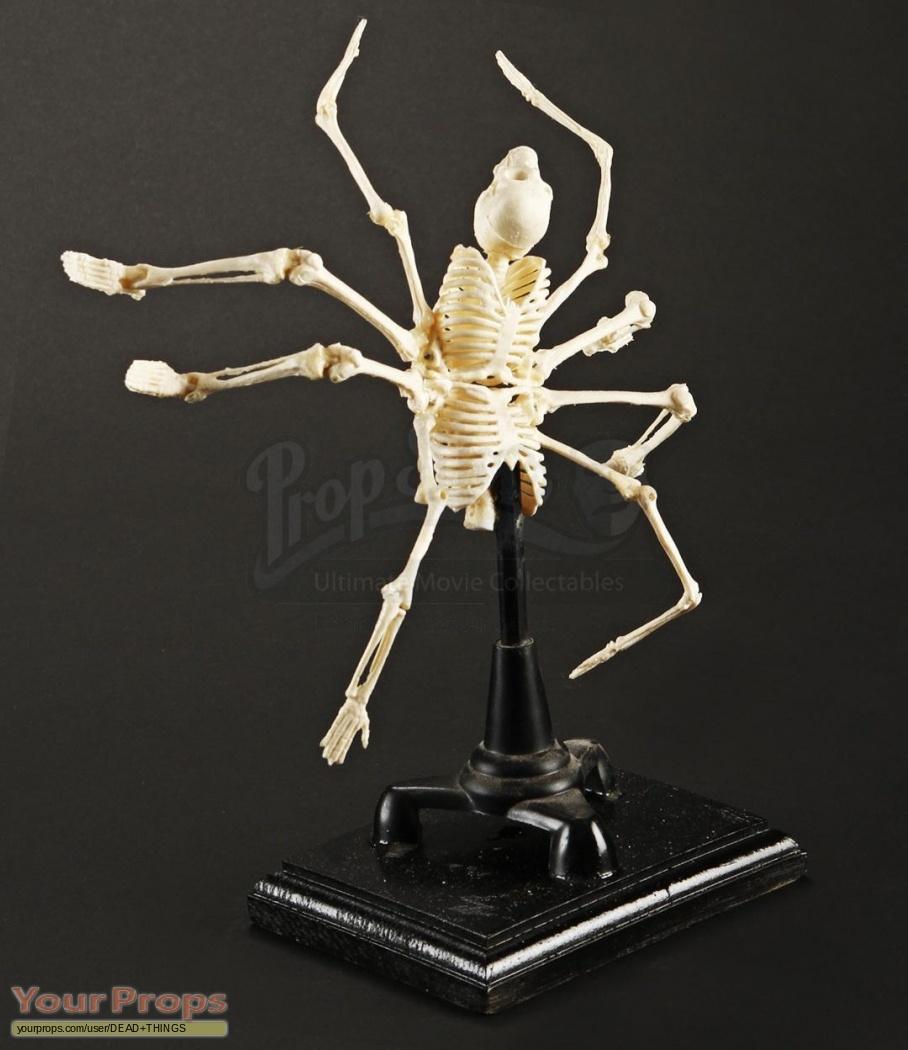 The collection miniature skeleton trophy maquette original for Maquette stand