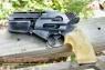 Battlestar Galactica replica movie prop weapon