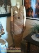 The Mummy original movie costume