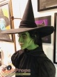 The Wizard of Oz made from scratch make-up   prosthetics