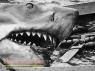 Jaws made from scratch movie prop
