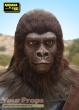1968 Planet of the Apes replica movie costume