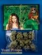 Weeds original movie prop