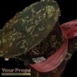 Alice In Wonderland replica movie costume