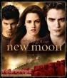 Twilight  New Moon original set dressing   pieces